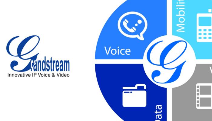 Curso Online Centralita IP UCM6100 Grandstream - Avanzada 7
